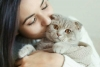 International Cat Day: Reasons Why Being a Cat Owner is good for Health