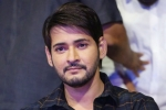 Double Treat for Mahesh Fans